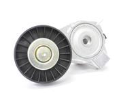 Saab Belt Tensioner - INA 4898755
