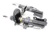 Volvo Strut Assembly Pair- Monroe 30683703KT