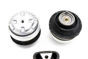 Mercedes Engine Mount Kit - Lemforder 2202401618